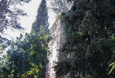 Cordobeando por la Torre del Beato - Senderos Cordoba