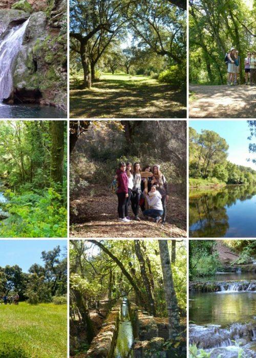 Desde Pozoblanco al arroyo Bejarano. - Senderos Cordoba