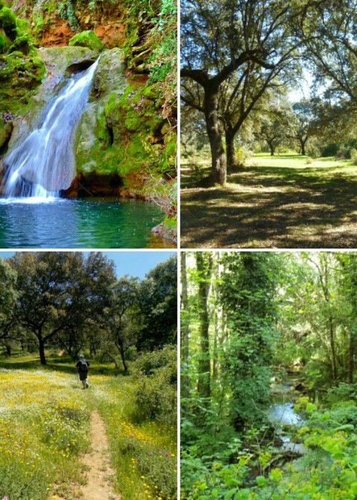 Free Tour Cordobeando por el Bejarano - Senderos Cordoba
