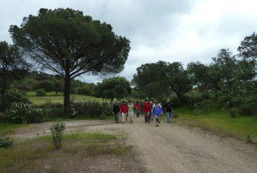 De las Salesas a Santo Domingo - Senderos Cordoba
