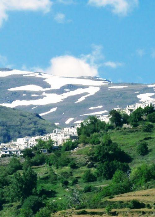 Alpujarra mayo 2021 (7) - Senderos Cordoba
