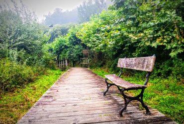 Camino Inglés julio 2021 - Senderos Cordoba