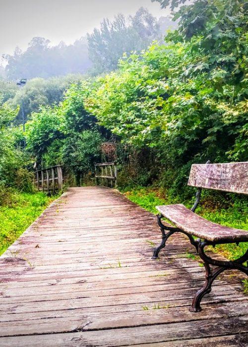 Camino Inglés (2) - Senderos Cordoba