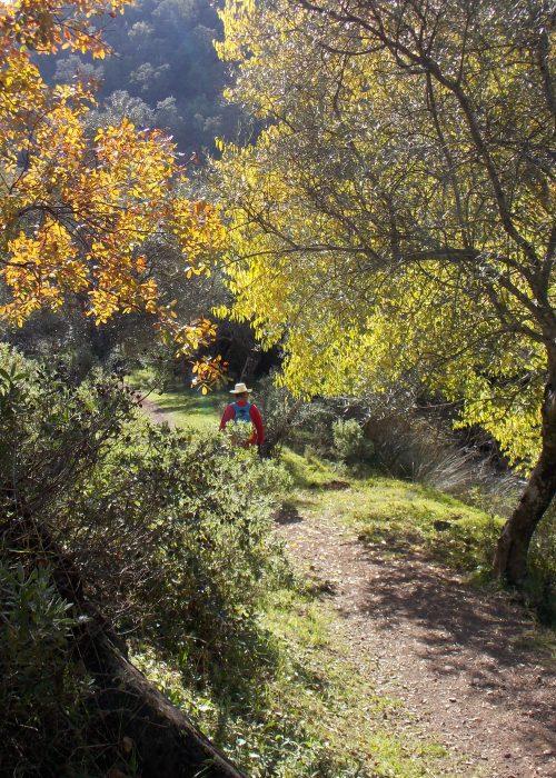 Paseo cordobeando, afluentes del Pedroche - Senderos Cordoba