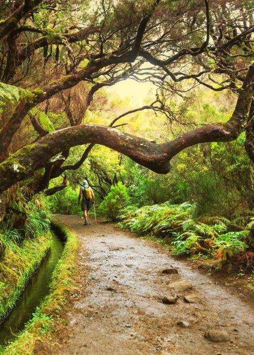 Semana Santa en Madeira - Senderos Cordoba