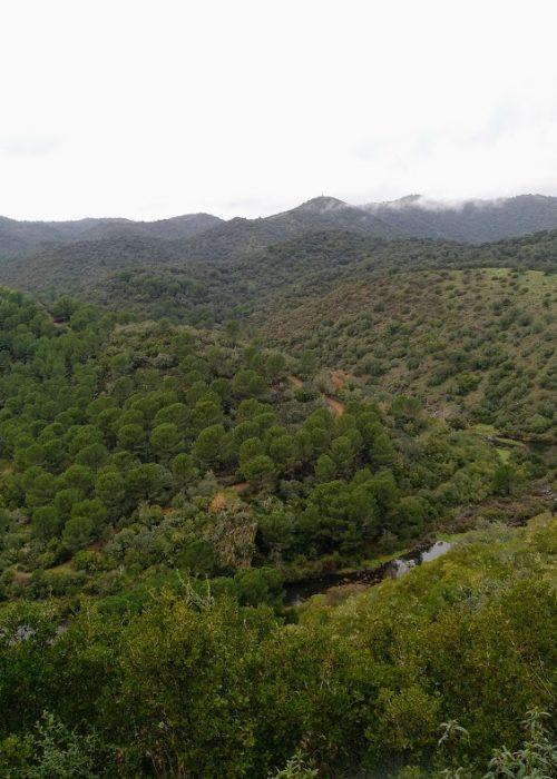 Meandro del río Guadiato, puentes Romano y Califal - Senderos Cordoba