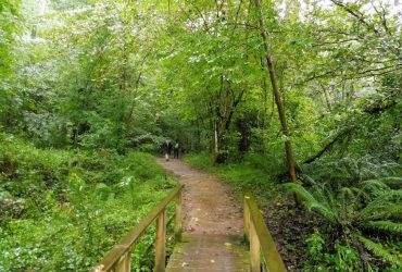 Camino Lebaniego (10 al 16 octubre) - Senderos Cordoba