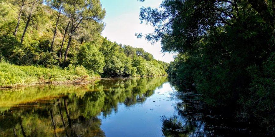 Descubre el arroyo Bejarano